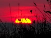 01-14 августа 2012 По побережью двух морей