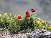 Майские 2013 По востоку Крыма