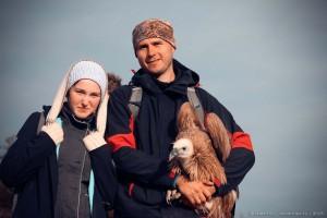 Белоголовый сип фото Крым